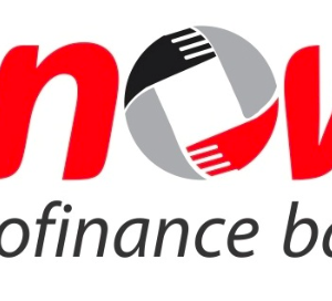 snow microfinance