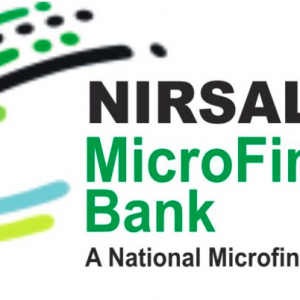 Nirsal microfinance loan
